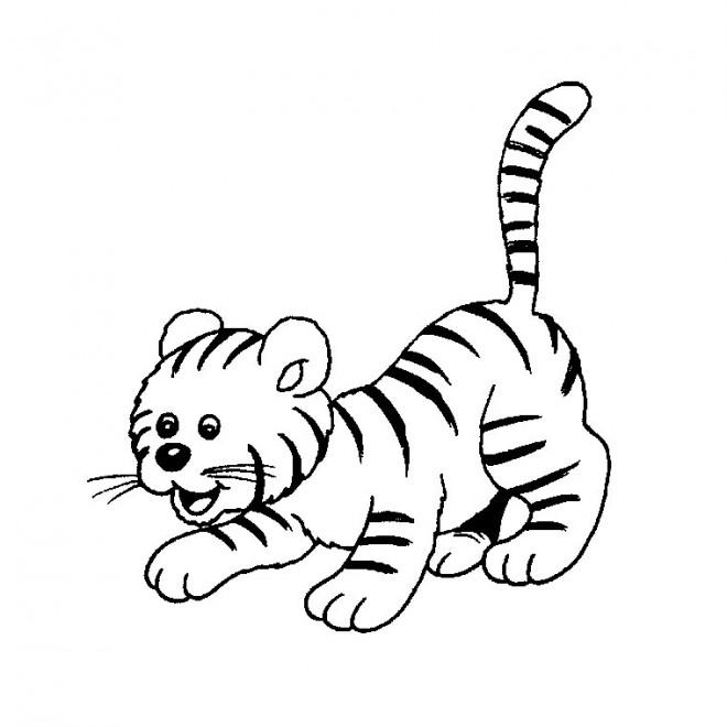 Coloriage et dessins gratuits Bébé de Tigre à imprimer