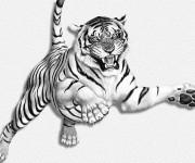 Coloriage et dessins gratuit Image d'un Tigre tout en sautant à imprimer