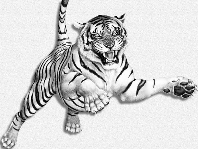 Coloriage image d 39 un tigre tout en sautant dessin gratuit imprimer - Image dessin tigre ...