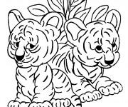Coloriage Les bébés de Tigre