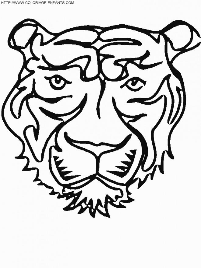 Coloriage et dessins gratuits Tête de Tigre simple à imprimer