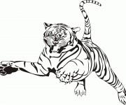 Coloriage dessin  Tigre 11