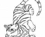 Coloriage dessin  Tigre 7