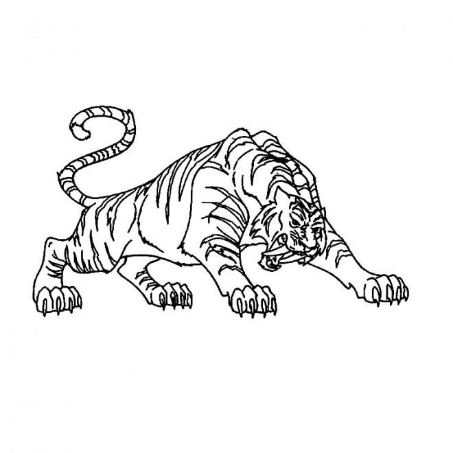Coloriage tigre en attaquant dessin gratuit imprimer - Coloriage tigre ...
