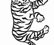 Coloriage Tigre en train de surveiller
