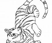 Coloriage et dessins gratuit Tigre simple à imprimer