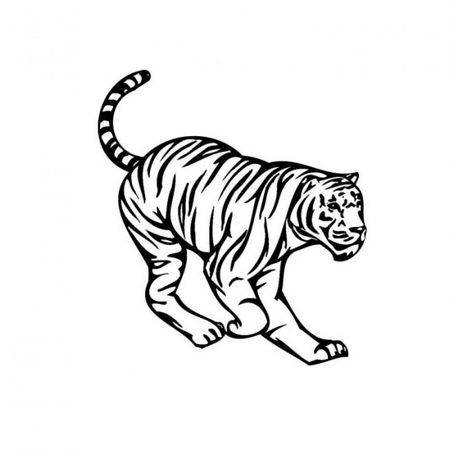 Coloriage et dessins gratuits Tigre vecteur à imprimer