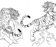 Coloriage Tigres se combattent