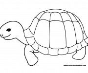 Coloriage dessin  Tortue 2