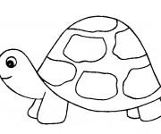 Coloriage dessin  Tortue 7