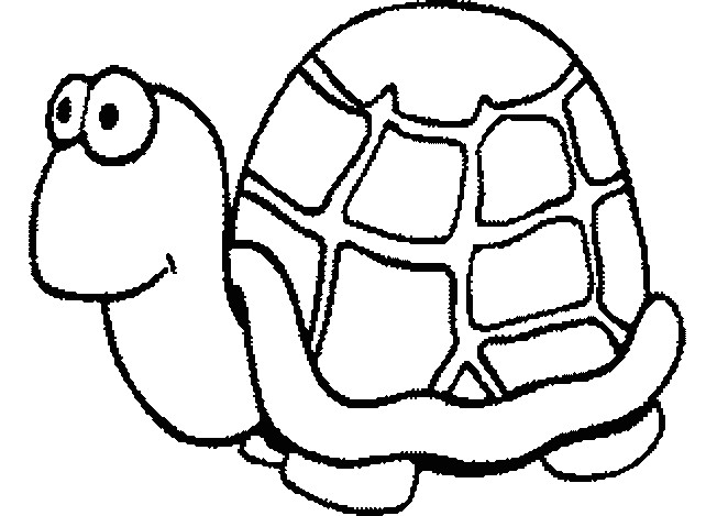 Coloriage et dessins gratuits Tortue avec le regard humoristique à imprimer