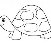 Coloriage et dessins gratuit Tortue avec petit tête à imprimer
