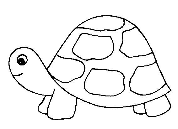 Coloriage tortue avec petit t te dessin gratuit imprimer - Tortue en dessin ...