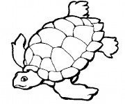 Coloriage et dessins gratuit Tortue en train de nager à imprimer