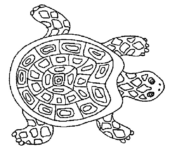 Coloriage tortue mandala dessin gratuit imprimer - Dessin anime des tortues ninja ...