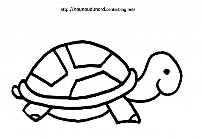 Coloriage et dessins gratuits Tortue pour enfant à imprimer