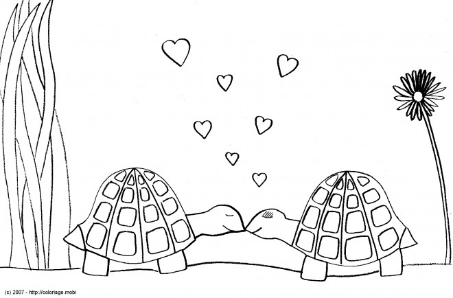 Coloriage tortues amoureux dessin gratuit imprimer - Dessin anime des tortues ninja ...