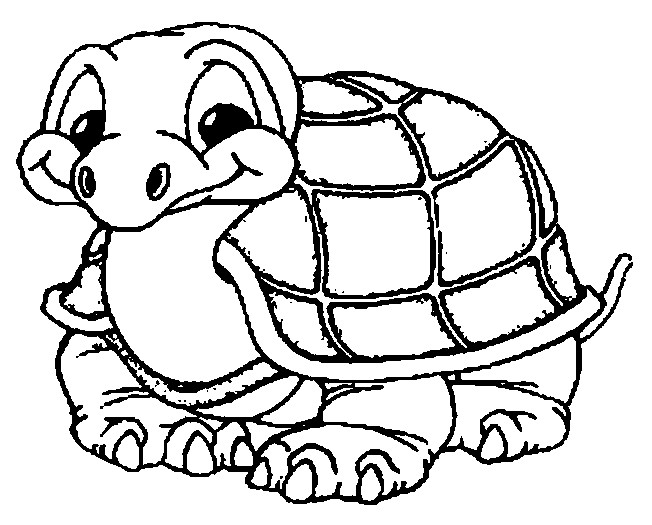 Coloriage une petite tortue dessin gratuit imprimer - Coloriage pour les grands ...