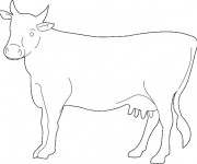 Coloriage et dessins gratuit Un portrait de Vache à imprimer