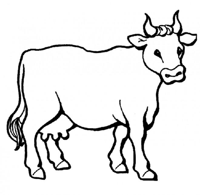 Coloriage et dessins gratuits une Vache à imprimer