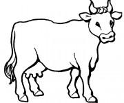 Coloriage dessin  Vache 4