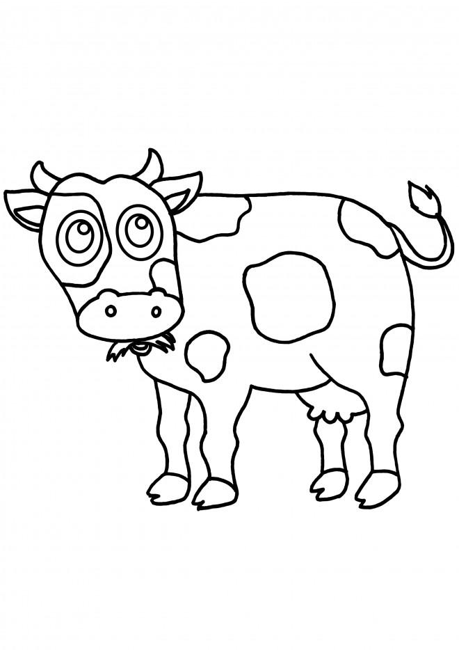 Coloriage Vache broute de l'herbe dessin gratuit à imprimer