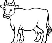 Coloriage et dessins gratuit Vache en ligne à imprimer
