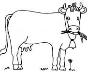 Coloriage Vache entrain de brouter