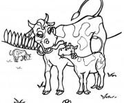 Coloriage Vache et veau en plein air