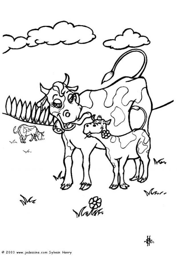 Coloriage vache et veau en plein air dessin gratuit imprimer - Vache normande dessin ...