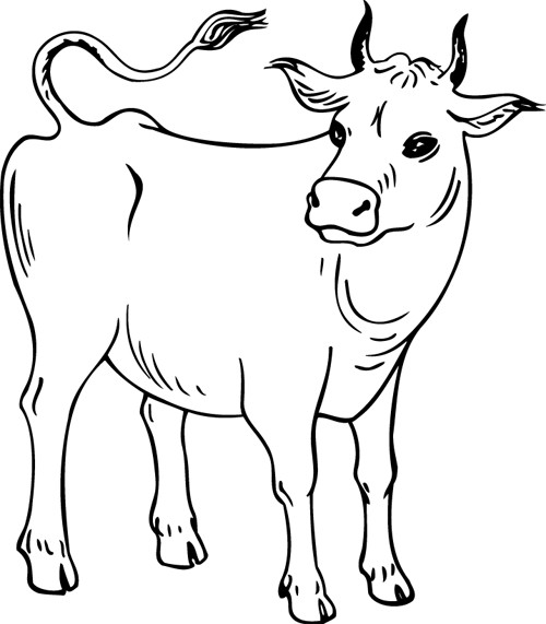 Coloriage et dessins gratuits Vache maternelle à imprimer