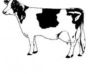 Coloriage Vache pour coloriage