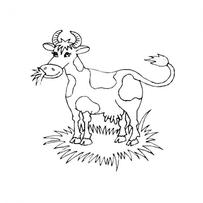Coloriage et dessins gratuits Vache qui broute à imprimer
