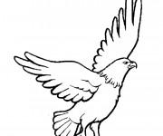 Coloriage et dessins gratuit Beau Vautour à imprimer
