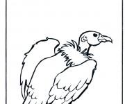 Coloriage dessin  Vautour 5