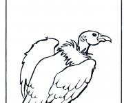 Coloriage et dessins gratuit Vautour couleur à imprimer