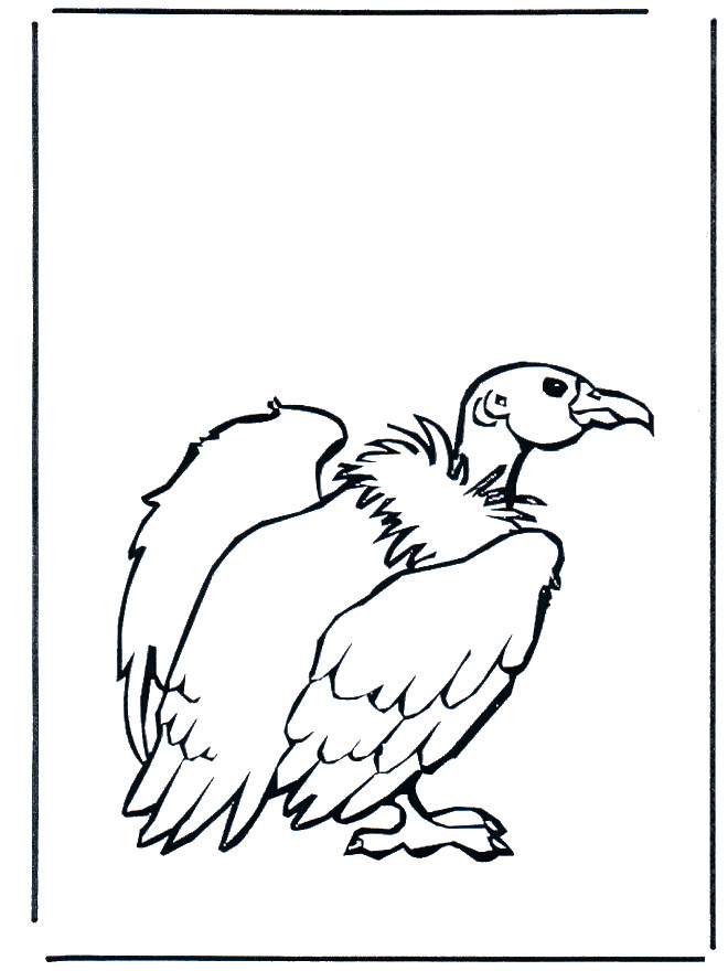 Coloriage et dessins gratuits Vautour couleur à imprimer