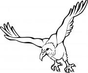 Coloriage et dessins gratuit Vautour en vol à imprimer