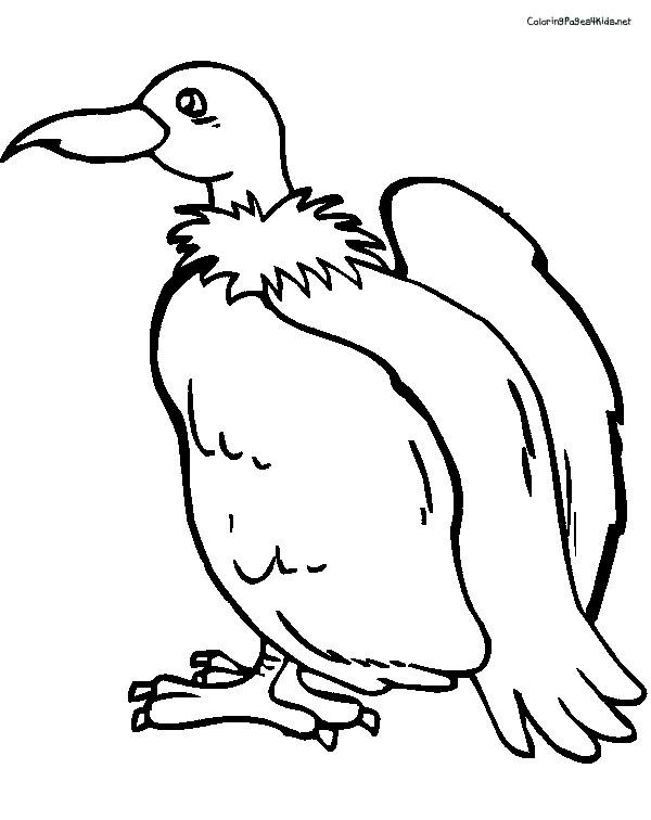 Coloriage et dessins gratuits Vautour sympathique à imprimer
