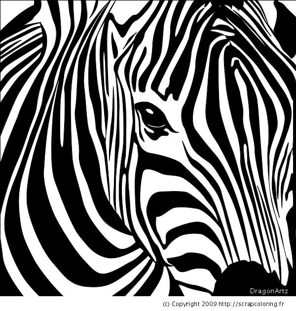 Coloriage Tête de Zèbre dessin gratuit à imprimer