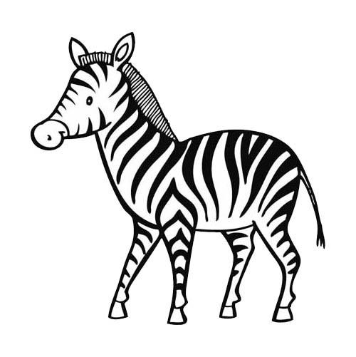 Coloriage un petit z bre dessin gratuit imprimer - Zebre a dessiner ...