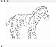 Coloriage dessin  Zebre 17