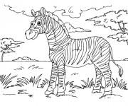 Coloriage et dessins gratuit Zèbre dans la nature à imprimer