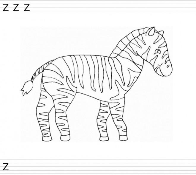 Coloriage z bre et la lettre z dessin gratuit imprimer - Coloriage zebre a imprimer ...