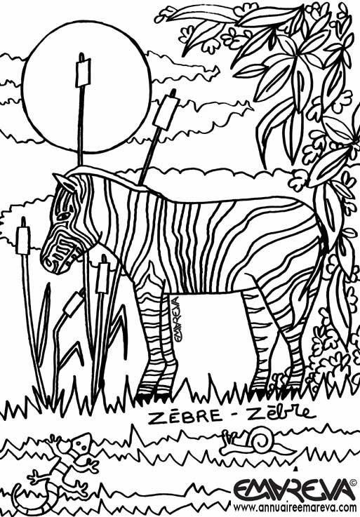 Coloriage et dessins gratuits Zèbre et plantes à imprimer