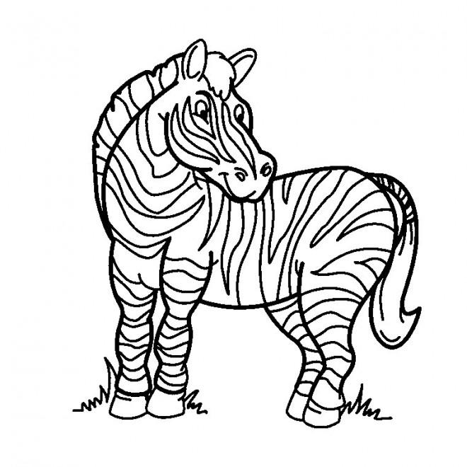 Coloriage et dessins gratuits Zèbre facile à imprimer