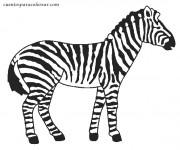 Coloriage et dessins gratuit Zèbre noir et blanc à imprimer