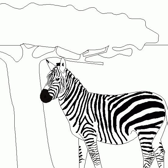 Coloriage et dessins gratuits Zèbre près de l'arbre à imprimer