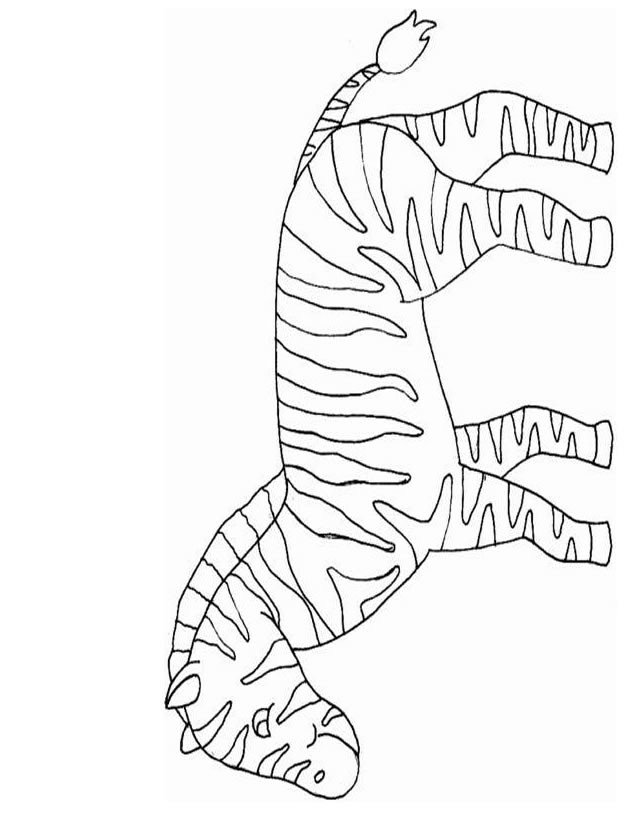 Coloriage et dessins gratuits Zèbre rayé  pour enfant à imprimer
