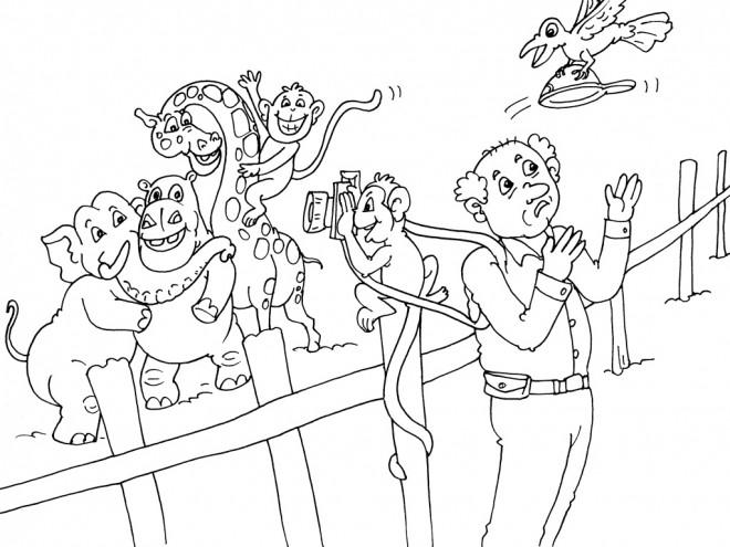 Coloriage et dessins gratuits Animaux de Zoo et le photographe à imprimer